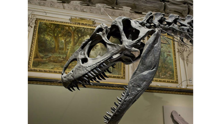 A Dinosaur in the Contemporary Art Sale: How Images Inhabit Aesthetic Ecosystems